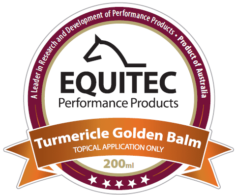 Turmericle Golden Balm
